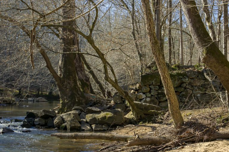 Hiking trails are plentiful at Eno River State Park.